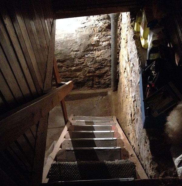 Basement-steps